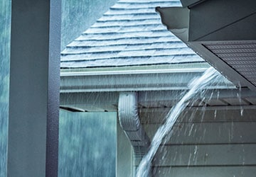 What to Do If You Have a Damp Basement